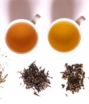 Black Tea vs. Green Tea